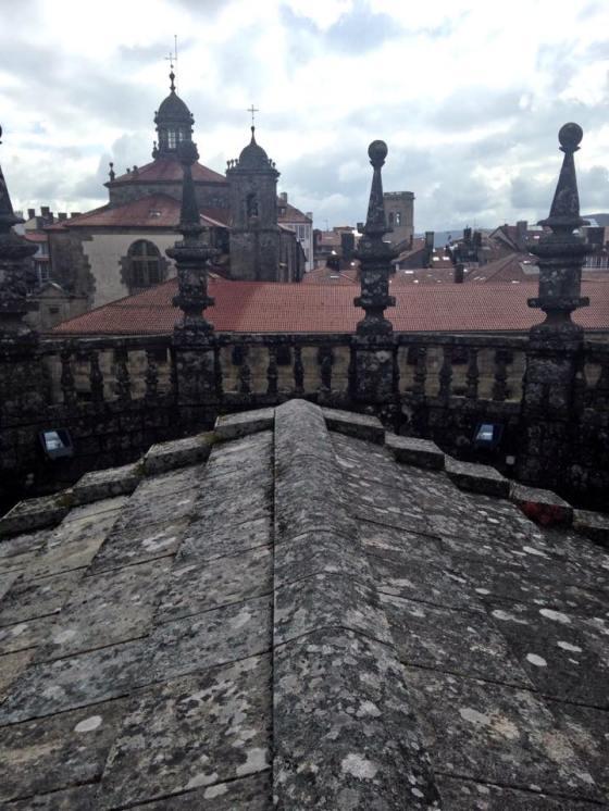 Tejado Catedral de Santiago